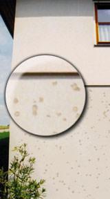 Fassadendämmsysteme, WDV-Systeme, StoTherm Classic, Hagelschauer, Fassadendämmung, Wärmedämm-Verbundsystems, WDVS, Fassadendämmsystem