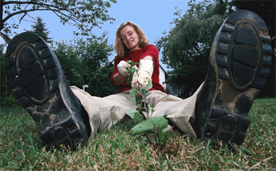 Unkraut jäten, Rasen, Rasenfläche, Stadtpark, heimischer Garten, gepflegter Rasen, englischer Rasen