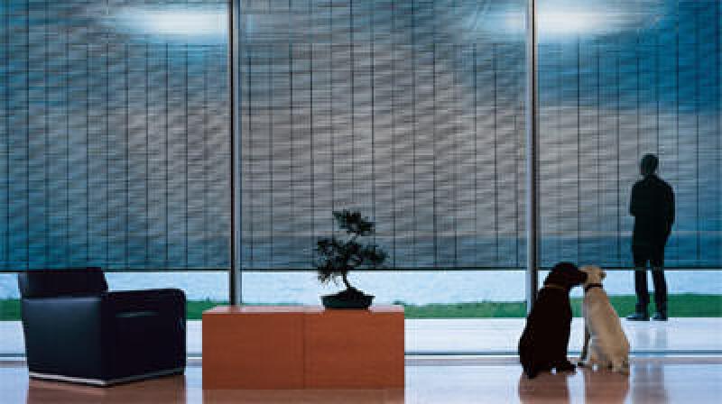 transparenter Sonnenschutz, Markisen, Blendschutz, Wärmeschutz, Sonnenschutzsysteme