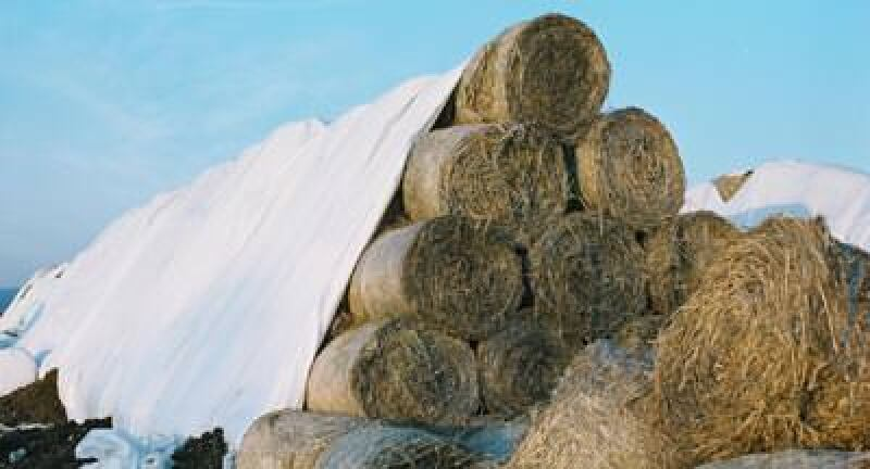 Wärmedämmung, Naturdämmstoffe, Naturdämmstoff, Dämmstoff, Naturfasern, Dachdämmung, Arbeitsgemeinschaft Dämmstoffe aus nachwachsenden Rohstoffen, ADNR, Fachagentur Nachwachsende Rohstoffe e.V., FNR, Flachs, Schafwolle