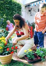 Blumendünger, Zimmerpflanzen, Gartenpflanzen, Terrassenpflanzen, Balkonpflanzen, Zimmerpflanze, Dünger, Blumenerde, Pflanzerde, Pflanzhumus, Perlhumus, Rindenmulch, Gartenkalk