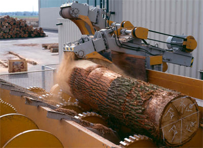 Furnier, Holzfurnier, Echtholz-Furnier, Initiative Furnier + Natur e.V. IFN, Furniersiegel, Echtholzfurnier, Möbelmesse
