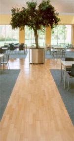 Bodenbelagsklebstoffe, Bodenbelagsklebstoff, Gemeinschaft für Emissionskontrollierte Verlegewerkstoffe e.V., Bodenbeläge verlegen, Parkettkleber, lösemittelfreier Klebstoff, Vorstrich, Spachtelmasse, lösemittelfreie Klebstoffe, textiler Bodenbelag, elastische Bodenbeläge, Teppichkleber, Dispersionsklebstoff,  Parkett, Teppichboden, PVC-Belag, Kautschukbeläge, Kautschukbelag