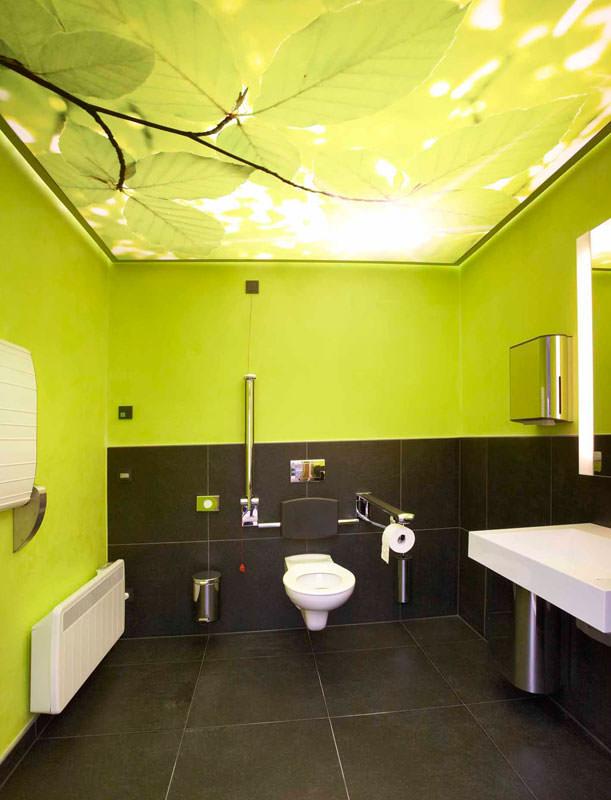 ffentliches wc der sinne auf der landesgartenschau. Black Bedroom Furniture Sets. Home Design Ideas