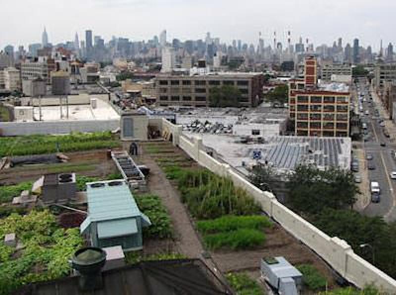 Gründach mit Dachgarten