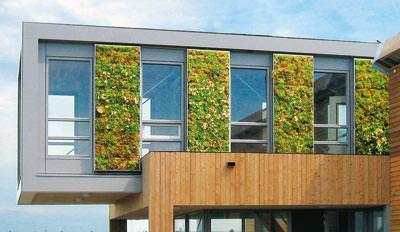 Fassadenbegrünung / Grünfassade: Zinco Vertigreen