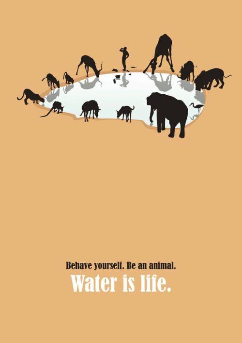 Internationale Plakatkunst zeigt: Wasser ist Leben!