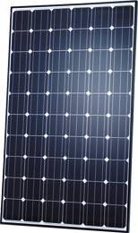 """Perform Mono 260"" Schott Solar"