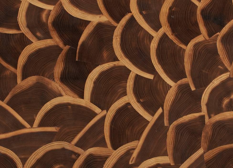 butt cut hirnholz furnier von schorn groh im plattenformat. Black Bedroom Furniture Sets. Home Design Ideas