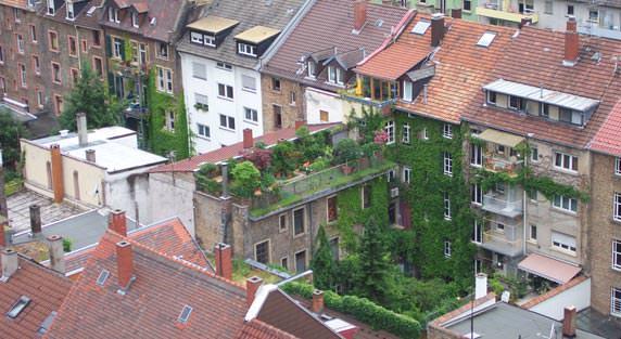 Gründach des Jahrzehnts der Fachvereinigung Bauwerksbegrünung e.V. (FBB)