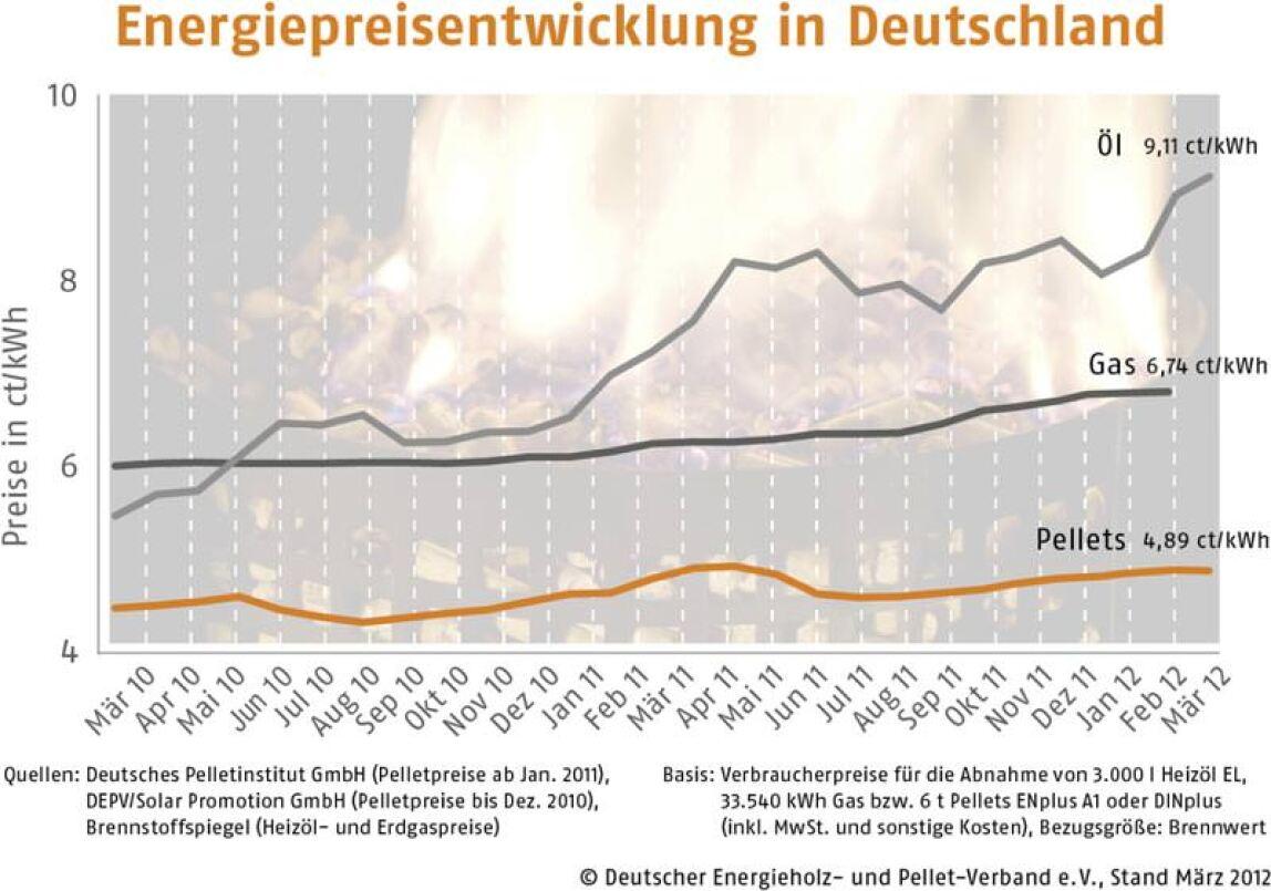 Der DEPV-Preisindex wird seit Jahresbeginn 2011 im Monatsrhythmus veröffentlicht. Er bezeichnet den Durchschnittspreis in Deutschland für eine Tonne Pellets der Qualitätsklasse ENplus A1 bzw. DINplus (Abnahme 6 t lose eingeblasen, Lieferung im Umkreis 50 km, inkl. aller Nebenkosten und MwSt.