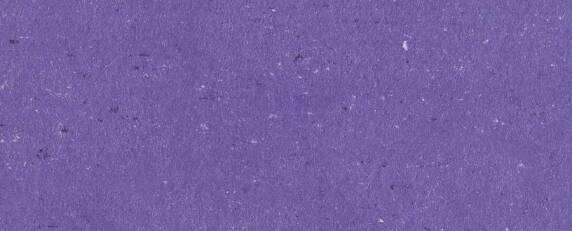 melrose violett