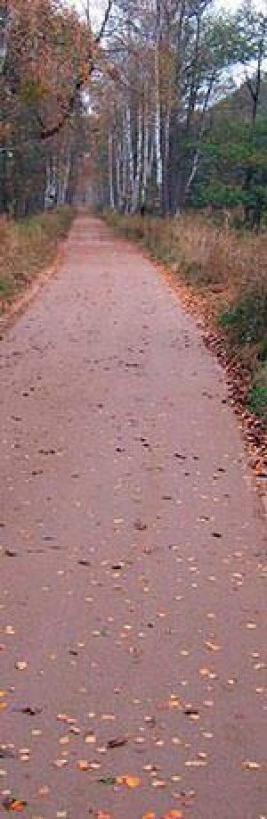 Wegebau im Müritz-Nationalpark aus aufbereiteten Naturprodukten