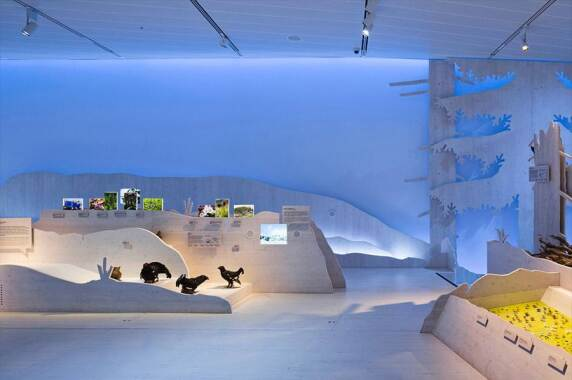 Museen: Haus der Berge, Berchtesgaden (LDE Belzner Holmes), Foto: Michael Jungblut