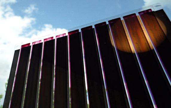 Gedruckte Organische Solarzellen auf ultradünnem Glas.