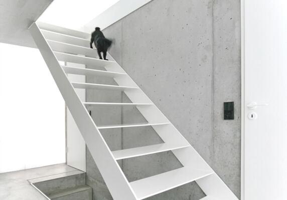 """Finckh Architekten, Projekt: """"Haus F"""""""