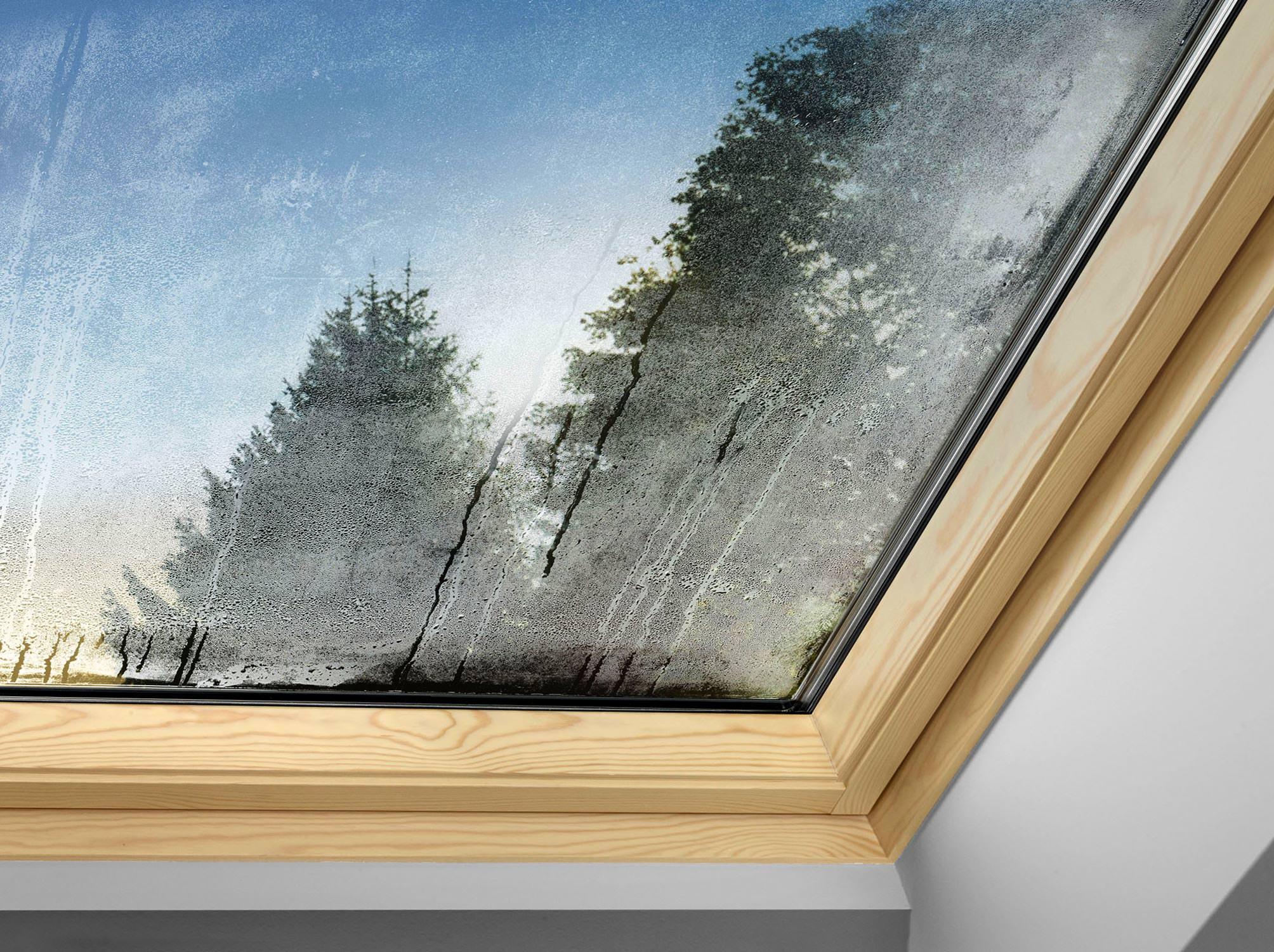 AuBergewohnlich Beschlagenes Dachfenster